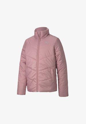 Winter jacket - foxglove