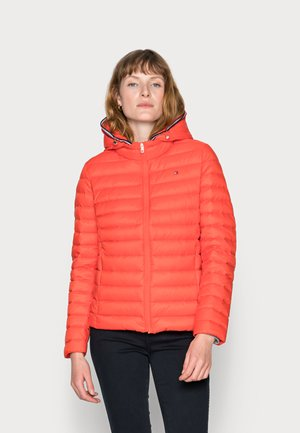 DOWN JACKET - Down jacket - red