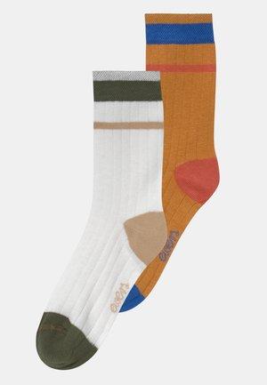 BOY 2 PACK - Strumpor - multi-coloured