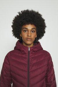 Hollister Co. - Winter coat - burgundy - 3