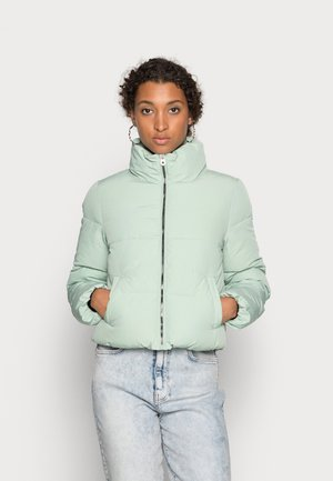 DOLLY  - Winter jacket - frosty green
