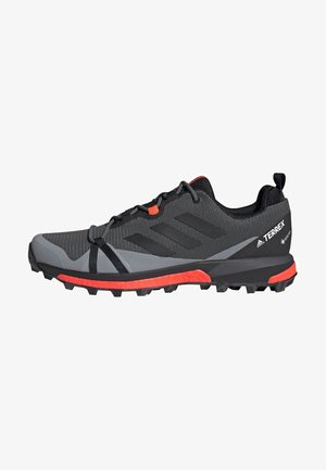 TERREX SKYCHASER LT GORE-TEX HIKING SHOES - Hiking shoes - grey