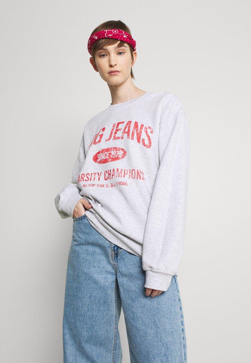 BDG Urban Outfitters - PRINTED - Sweatshirt - grey