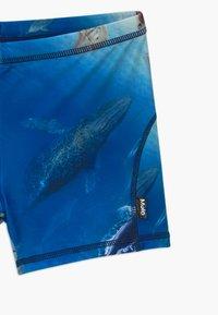 Molo - NORTON - Swimming trunks - above ocean - 3