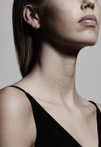 Pilgrim - Earrings - silver plated - 0