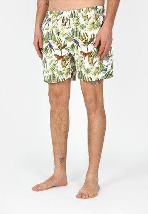 CATS - Shorts da mare - sand
