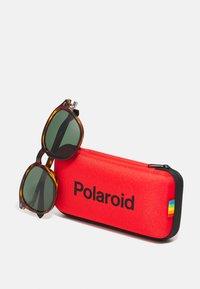 Polaroid - UNISEX - Sunglasses - brown - 2