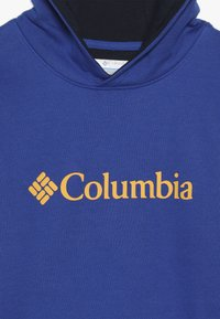 Columbia - BASIC LOGO YOUTH HOODIE - Mikina s kapucí - azul/collegiate navy - 2