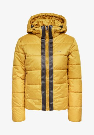 MEEFIC HOODED PADDED  - Winter jacket - green sulphur