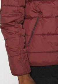 INDICODE JEANS - JUAN DIEGO - Winter jacket - red - 6