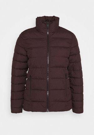 CLAVIERE WOMAN JACKET - Winter jacket - grape