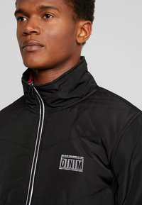 TOM TAILOR DENIM - LIGHT PADDED JACKET - Winter jacket - black/grey - 4