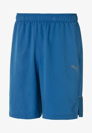 Shorts - indigo bunting