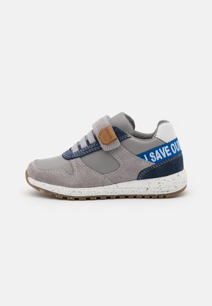 ALBEN BOY WWF - Trainers - grey/royal