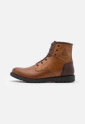 HIGHLAND - Šněrovací kotníkové boty - cognac