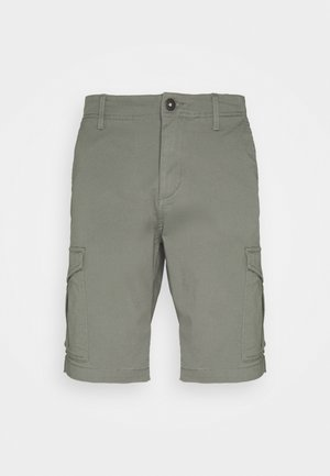 JJIJOE  - Shorts - sedona sage