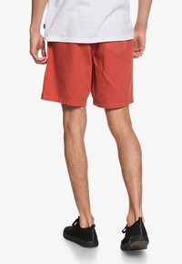Quiksilver - BRAIN WASHED 18 - Shorts - redwood - 2
