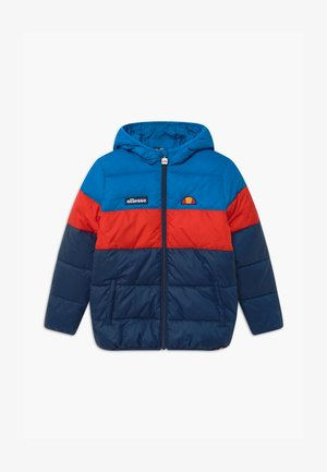 MUSCIA - Winter jacket - blue/navy