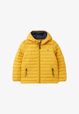 Winter jacket - antik gold