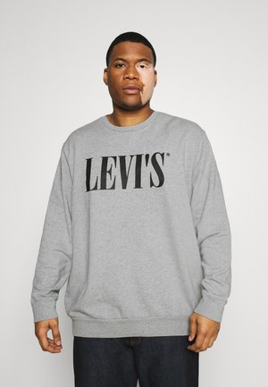 BIG CREW SEASONAL - Felpa - midtone heather grey