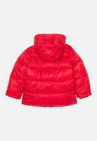 Champion - LEGACY OUTDOOR HOODED JACKET UNISEX - Chaqueta de invierno - red - 1