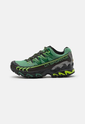 ULTRA RAPTOR GTX - Trail running shoes - black/grass green