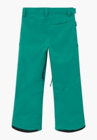 Burton - ELITE CARGO - Snow pants - dynasty green - 1
