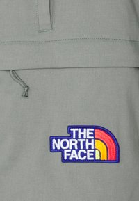The North Face - CLASS V BELTED - Pantalones montañeros cortos - agave green - 2