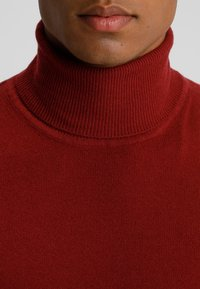 Benetton - BASIC ROLL NECK - Pullover - bordeaux - 4