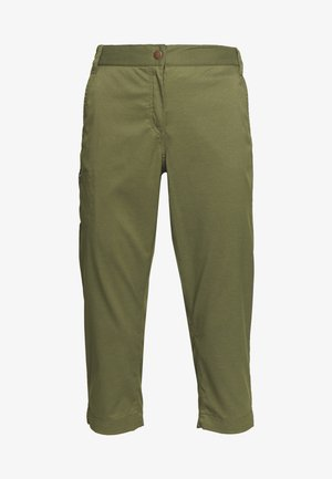 SENEGAL PANTS - Outdoorbroeken - delta green