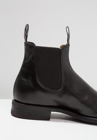 R. M. WILLIAMS - COMFORT CRAFTSMAN SQUARE G FIT - Classic ankle boots - black - 5