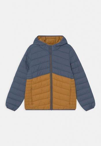 Winter jacket - dark blue/orange
