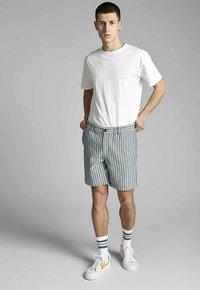 Anerkjendt - Shorts - sky captain - 1