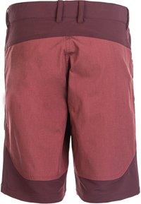 Whistler - Shorts - catawba grape - 2