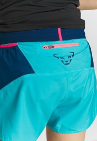 Dynafit - ALPINE PRO - Sports shorts - silvretta - 5