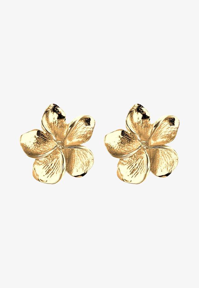FRANGIPANI-BLÜTE - Boucles d'oreilles - gold-coloured