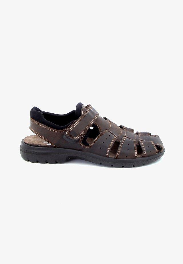 ITALO - Sandales de randonnée - dark brown