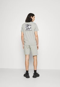 The North Face - GRAPHIC LOGO - Shorts - wrought iron - 2