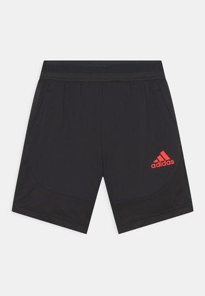 Sports shorts - black/vivid red