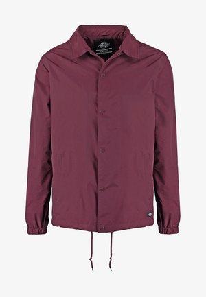 TORRANCE - Summer jacket - maroon