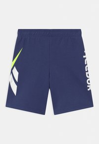 Reebok - VECTOR PLACEMENT - Tracksuit bottoms - navy - 1