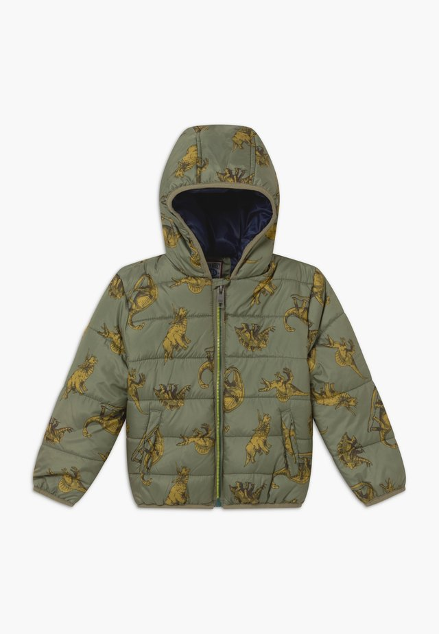 SMALL BOYS - Winter jacket - deep lichen green