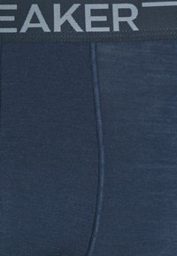 Icebreaker - ANATOMICA BOXERS - Pants - serene blue - 2