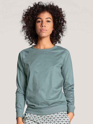 Long sleeved top - eucalyptus