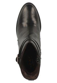 Scapa - Classic ankle boots - noir - 1