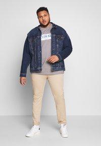 Calvin Klein - STRIPE LOGO  - T-shirt con stampa - grey - 1