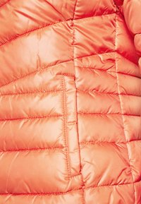 TOM TAILOR DENIM - LIGHT PADDED JACKET - Lett jakke - burnt coral - 6
