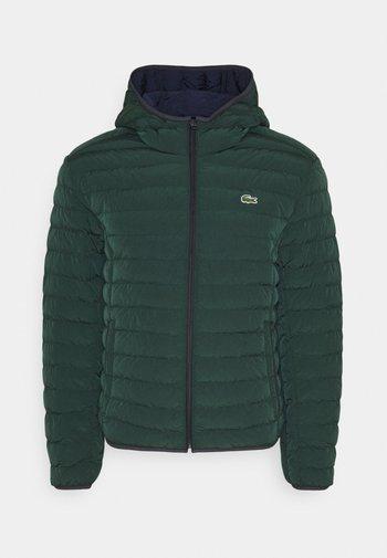 Winter jacket - sinople