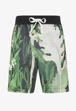 ALUMNI SHORT FLORAL - Pantalones deportivos - spruce aura