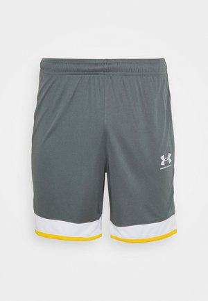 CHALLENGER SHORT - Sports shorts - pitch gray